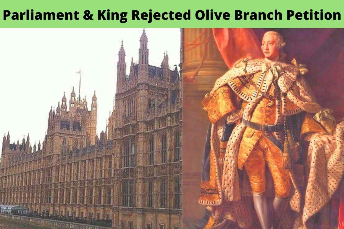 What Was The Short Term Effect of The Kings Rejection of The Olive Branch Petition
